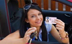 renovar carnet de conducir la laguna santa cruz tenerife